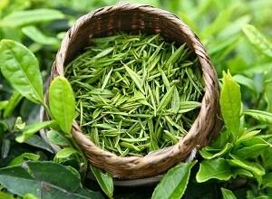 Как приготовить маску для волос на основе зеленого чая?