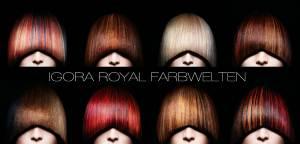 Что это цвета Igora Royal