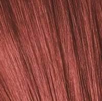 Какие оттенки серии красных и шоколадных цветов входят в палитру красок Igora Royal