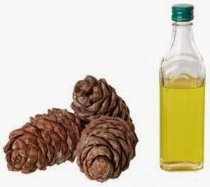 Кедровое масло и шишки