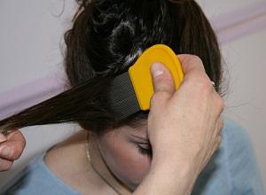 Как применять дегтярное мыло от вшей и гнид