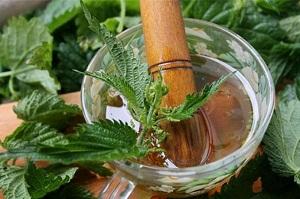 Как правильно приготовить отвар из крапивы