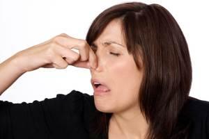 Какой запах имеет никотиновая кислота