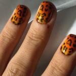 animal-prints (13)