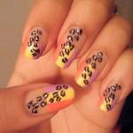 animal-prints (2)